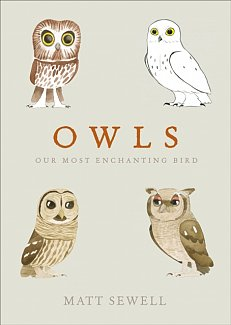Owls : Our Most Enchanting Bird by Matt Sewell (Hardcover)